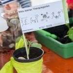 Gartenaktion-Therapiegarten-Salzstadel3